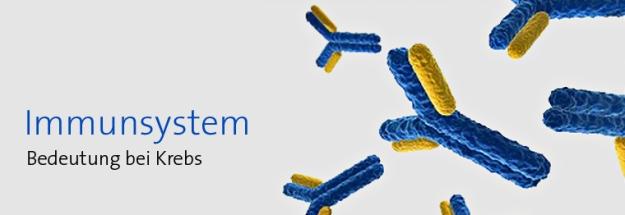 Antikörper